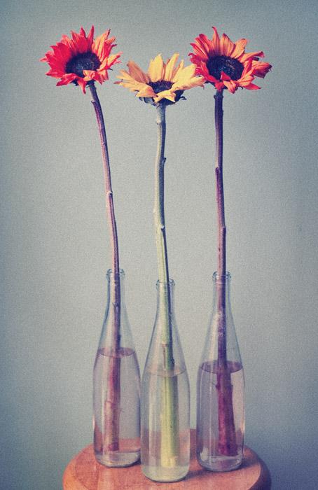 DIY Vases For St-Valentine Flowers: Snflowers
